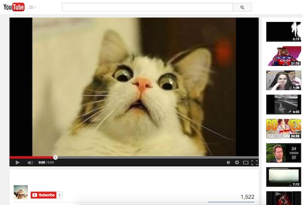 Youtube cat videos logo #1