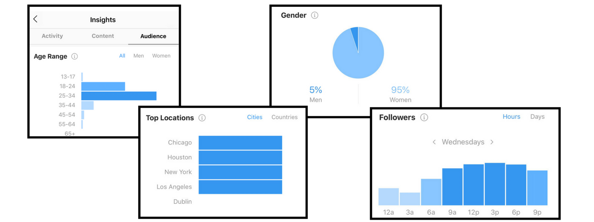 screenshots of instagram audience analytics