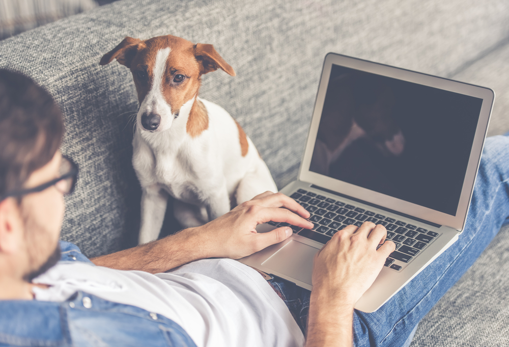 man with dog and computer