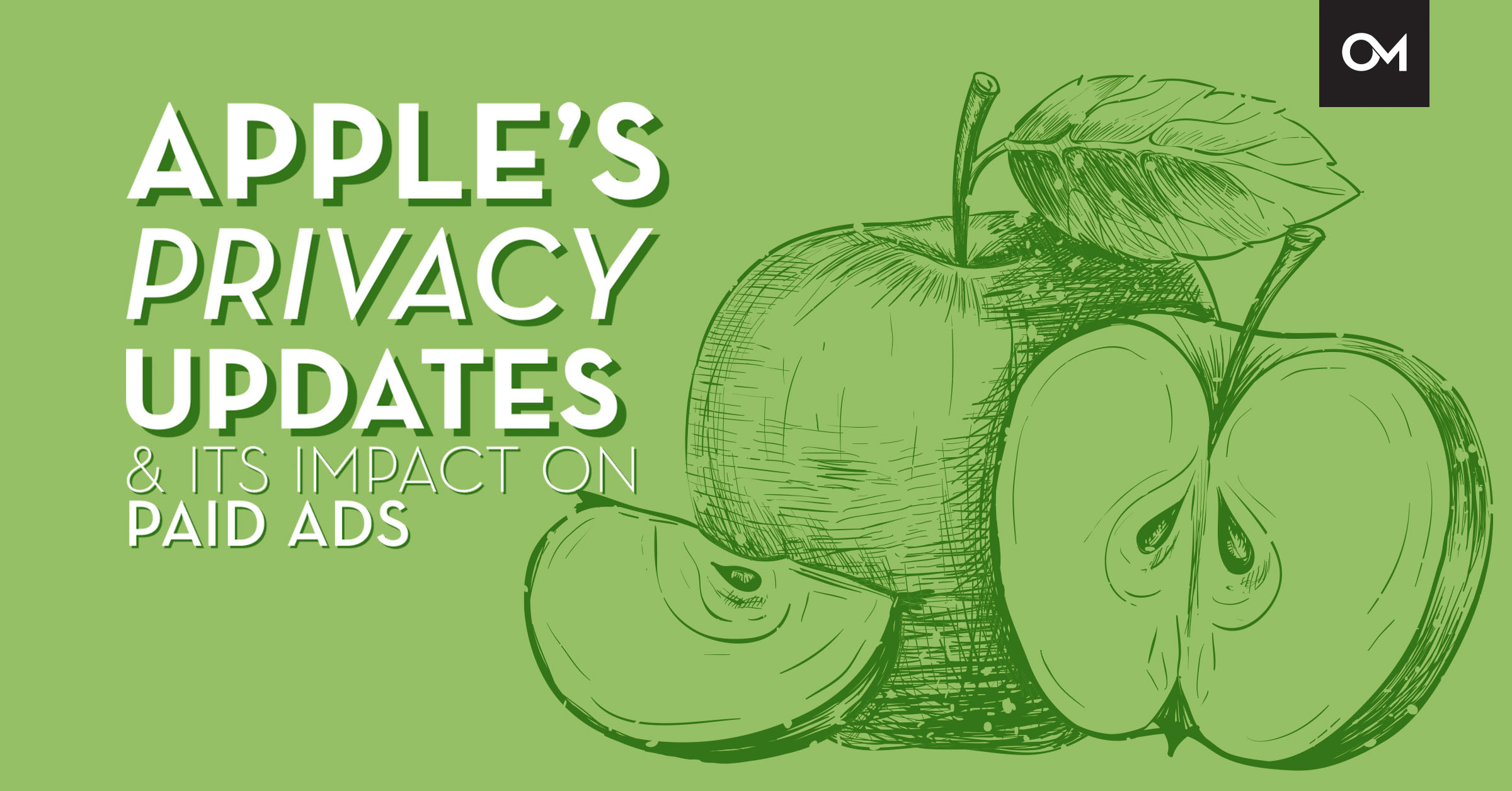 Apple's Privacy Updates and Its Impact on Paid Ads